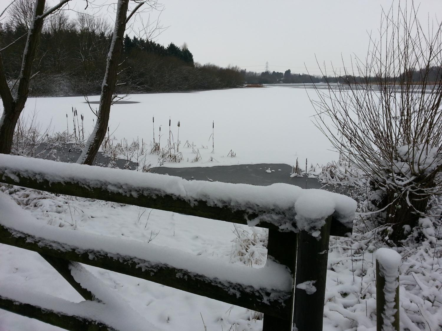 snow scene at Whisby Nature Reserve