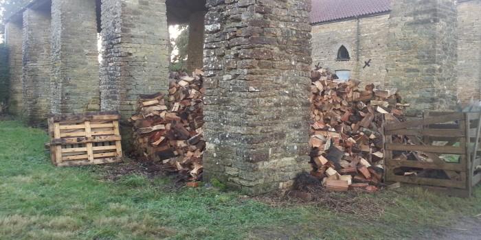 Logs at Fillingham