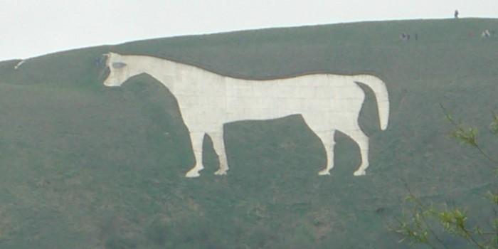 horseburgers