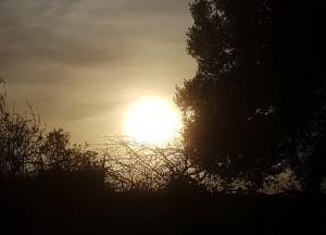 weak sun