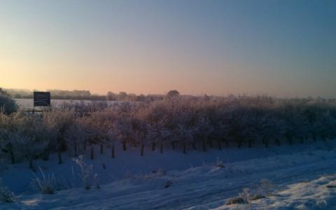 winter scene in Lincolnshire