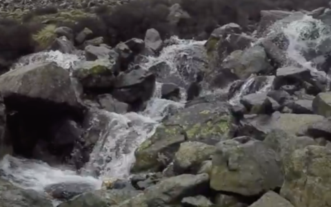 stream on mountain